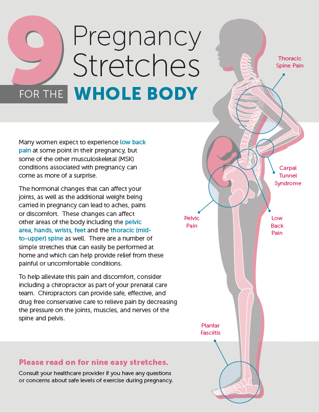 9 pregnancy stretches preview image