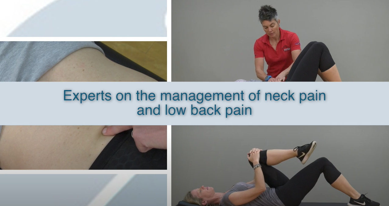 CCGI Low Back Pain Exercise Video