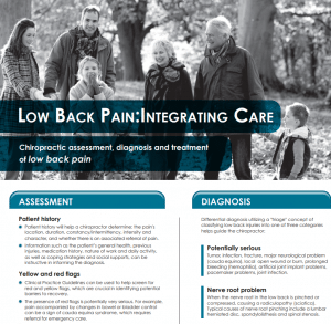 MedicalPost Low Back Pain Care May 2015