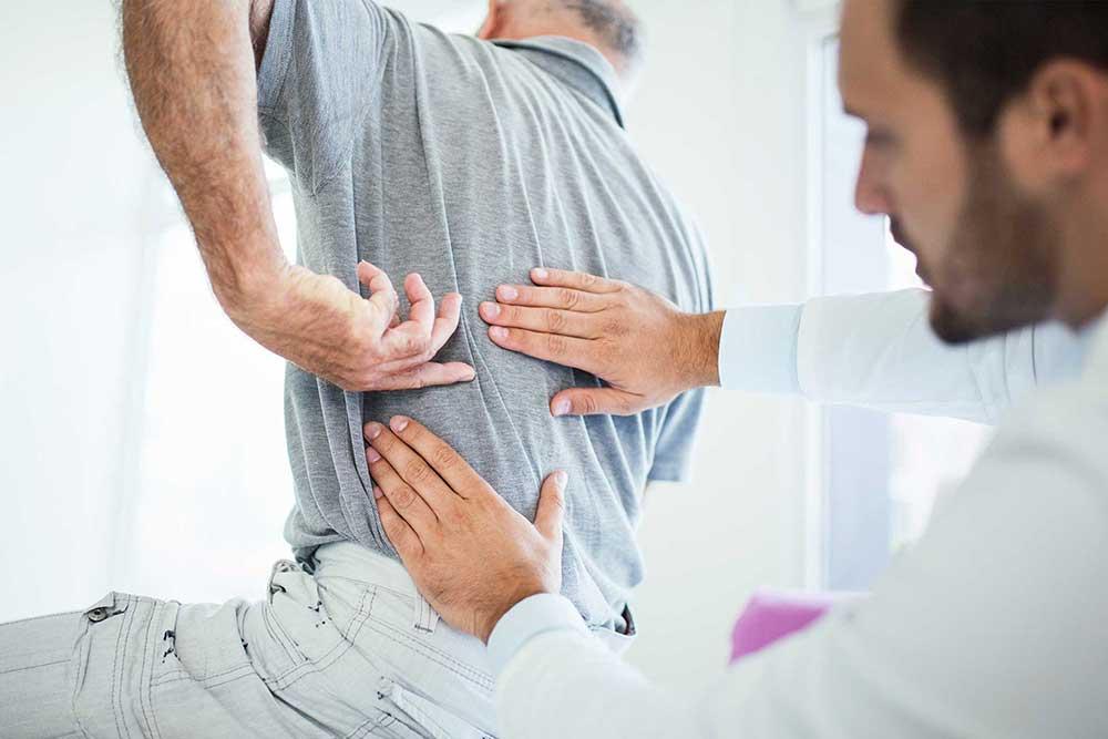 low back or pelvis
